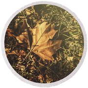 Round Beach Towel featuring the photograph Autumn In Narrandera by Jorgo Photography - Wall Art Gallery
