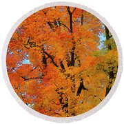 Round Beach Towel featuring the photograph Autumn In Southern Ontario by Gary Hall