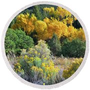 Autumn In The Canyon Round Beach Towel