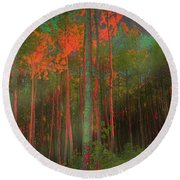 Round Beach Towel featuring the photograph Autumn In The Magic Forest by Mimulux patricia no No