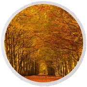 Autumn Lane In An Orange Forest Round Beach Towel