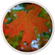 Autumn Leaf In The Rain Round Beach Towel