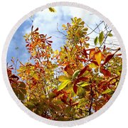 Autumn Leaves In Bellingham Round Beach Towel
