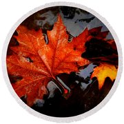 Autumn Leaves In Tumut Round Beach Towel