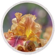 Autumn Leaves Iris Flower. The Beauty Of Irises  Round Beach Towel