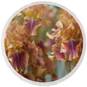 Autumn Leaves Irises In Garden Round Beach Towel