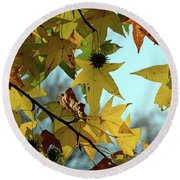 Round Beach Towel featuring the photograph Autumn Leaves by Joanne Coyle