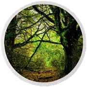 Round Beach Towel featuring the photograph Autumn Light by David Patterson