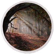 Autumn Light  Round Beach Towel by Scott Carruthers