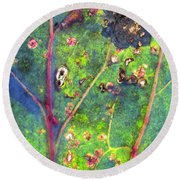 Round Beach Towel featuring the photograph Autumn Magic Colors by Raffaella Lunelli