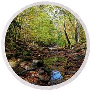 Round Beach Towel featuring the photograph Autumn Magical Colors by Paul Mashburn