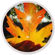 Autumn Maple Leaf Round Beach Towel
