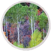 Round Beach Towel featuring the photograph Autumn Mix by Bryan Carter
