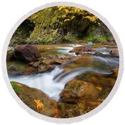 Round Beach Towel featuring the photograph Autumn Moment by Mike Dawson