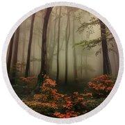 Autumn Mornin In Forgotten Forest Round Beach Towel