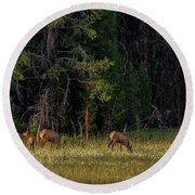 Autumn Morning In The Meadow Round Beach Towel by Yeates Photography