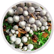 Autumn Mushrooms Round Beach Towel