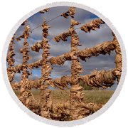 Round Beach Towel featuring the photograph Autumn Net by James Peterson