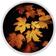 Autumn Photo Round Beach Towel