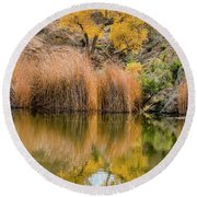 Autumn Reflection At Boyce Thompson Arboretum Round Beach Towel