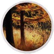 Round Beach Towel featuring the photograph Autumn Scene In A Dark Forest by Nick Biemans
