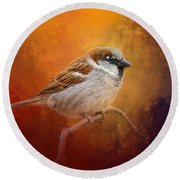 Autumn Sparrow Round Beach Towel