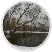 Round Beach Towel featuring the photograph Autumn Time 2 by Vladimir Kholostykh