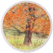 Round Beach Towel featuring the photograph Autumn Tree by Geraldine DeBoer