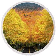 Autumn Tree Tunnel Round Beach Towel