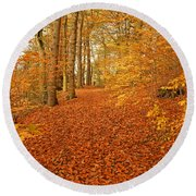 Autumn Woodland In Derbyshire Round Beach Towel