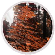 Autumnal Evening Round Beach Towel
