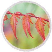 Autumnal Sumac Red Autumn Lace Leaves Round Beach Towel