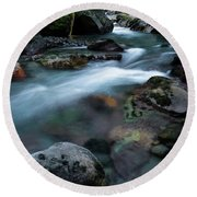 Avalanche Creek Through The Forest Round Beach Towel