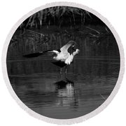 Round Beach Towel featuring the photograph Avocet Courtship Dance by John F Tsumas