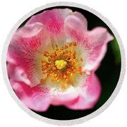 Awesome Pink Round Beach Towel