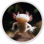 Axolotl Face Round Beach Towel