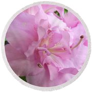Azalea Close Up Round Beach Towel by Cathy Harper