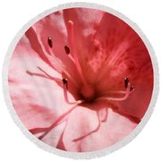 Azalea In Bloom Round Beach Towel by Cathy Harper