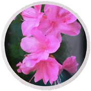 Azalea Spray Round Beach Towel by Ginny Schmidt