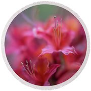 Azaleas Soft Flowers Details Round Beach Towel by Mike Reid