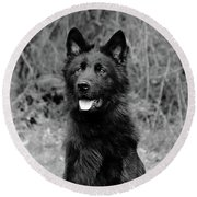 Round Beach Towel featuring the photograph Aziza  by Sandy Keeton