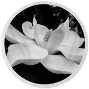 B W Magnolia Blossom Round Beach Towel