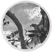 Round Beach Towel featuring the photograph B3 Landing by Geraldine DeBoer