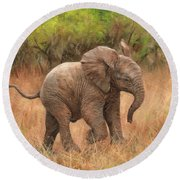 Baby African Elelphant Round Beach Towel