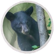 Baby Bear Takes A Peek Round Beach Towel