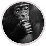 Round Beach Towel featuring the photograph Baby Bonobo by Helga Koehrer-Wagner