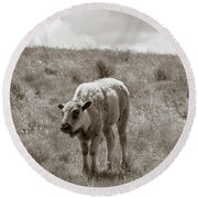 Round Beach Towel featuring the photograph Baby Buffalo In Field With Sky by Rebecca Margraf