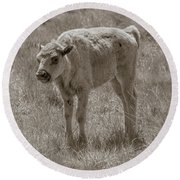 Round Beach Towel featuring the photograph Baby Buffalo by Rebecca Margraf