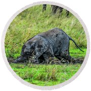 Baby Elephant Playing In The Mud Round Beach Towel