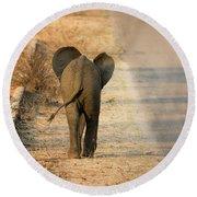 Baby Elephant Rear View Round Beach Towel